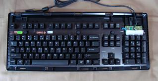 G8036004