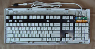 G8036005